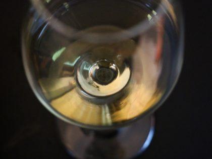 Curso de vinos alemanes